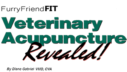 Veterinary-Acupuncture-Revealed